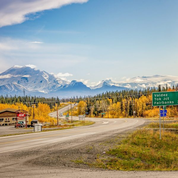 Alaska Native Corporations